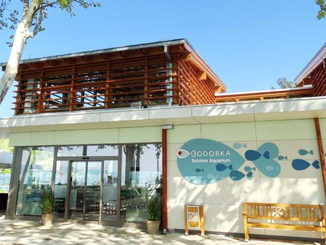 Balaton Bodorka Aquarium
