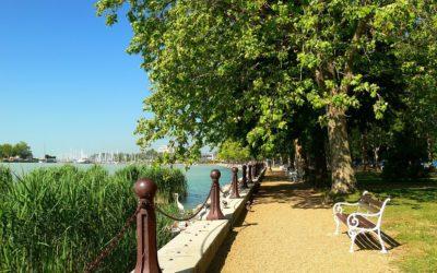 Tagore sétány és emlékfa park