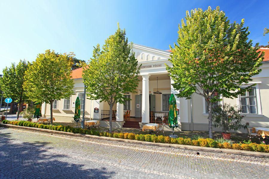 Die Villa von Lujza Blaha